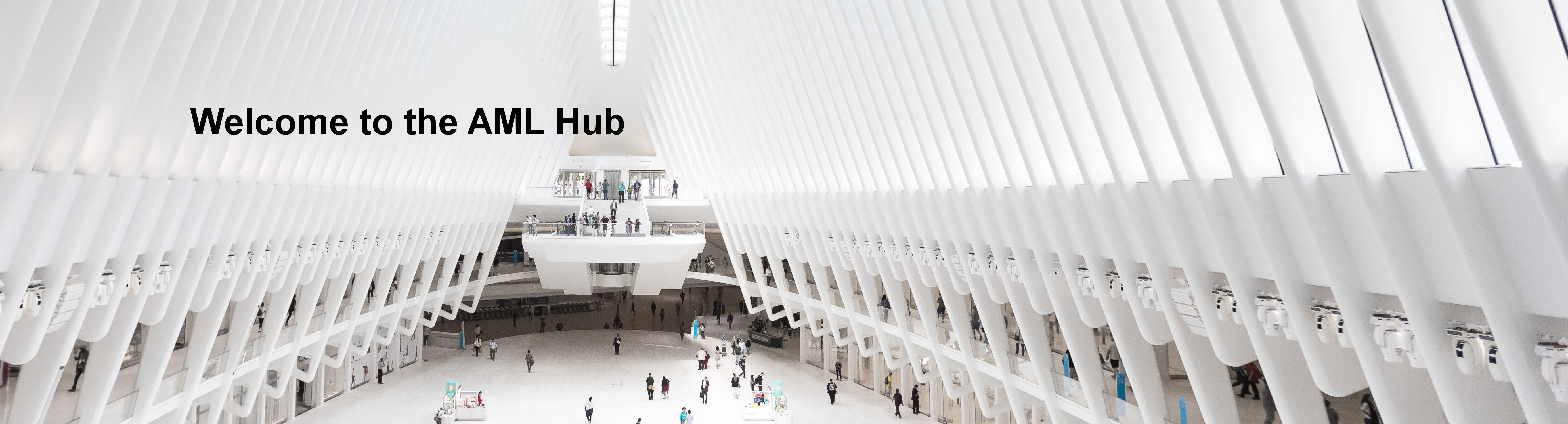 Slide: Welcome to the AML Hub - a photo of a central hub in a building